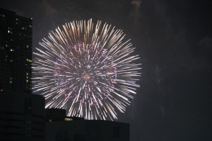 東京湾大華火祭の写真2