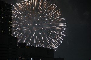 東京湾大華火祭の写真