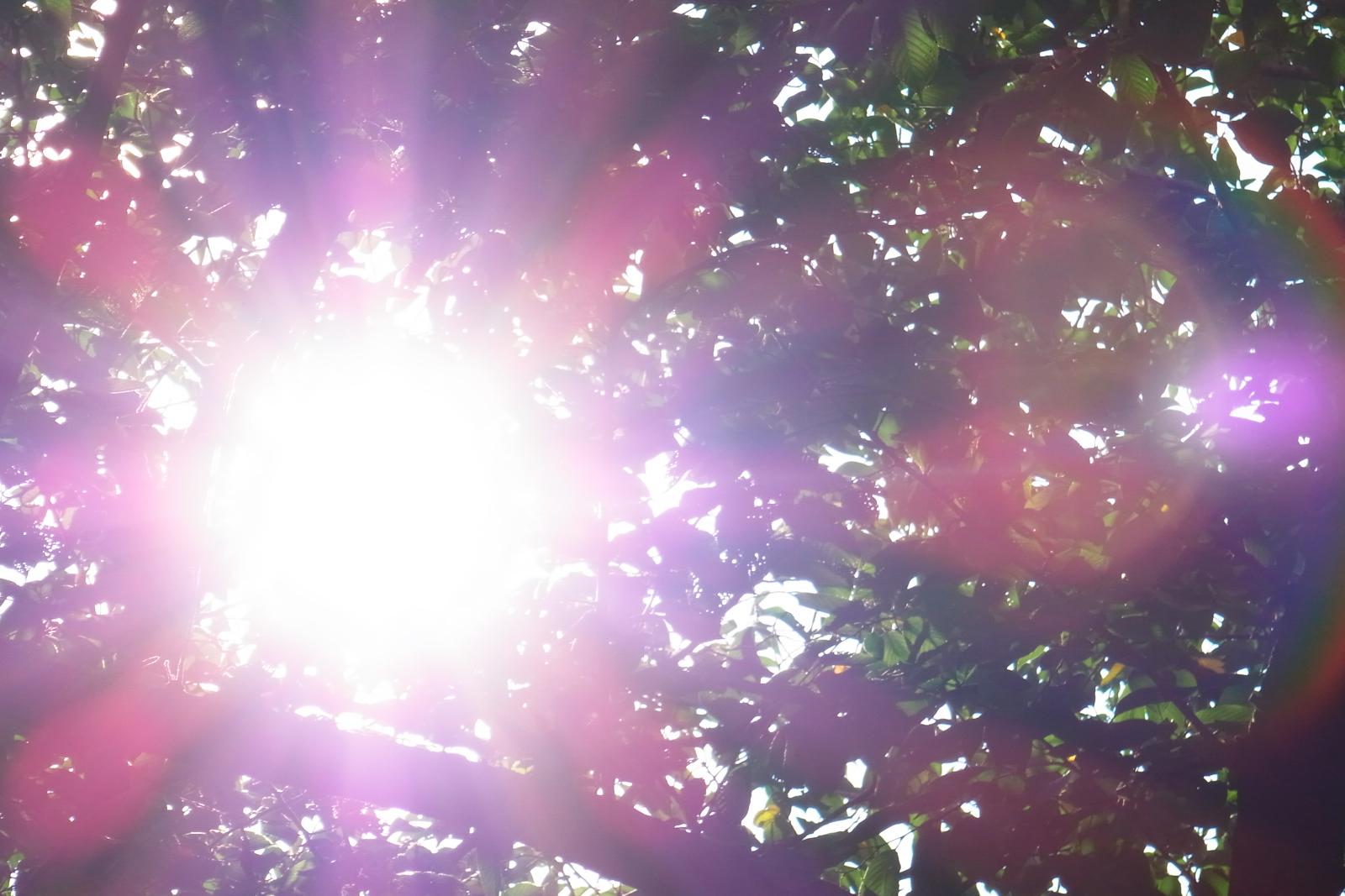 パワーみなぎる太陽