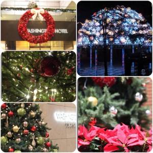 クリスマスツリーやデコレーションの数々