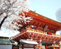 神田明神に咲く桜の花