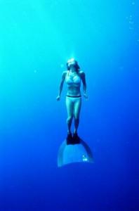 フリーダイビング画像